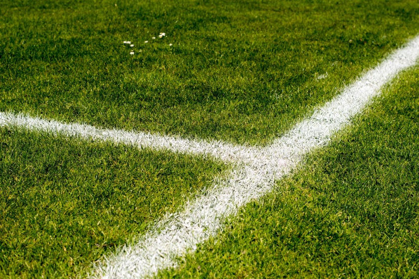 Fußballplatz mit Blume